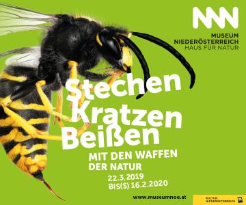 die neue Sonderausstellung im Haus für Natur im Museum Niederösterreich
